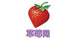 上海银行VISA全球支付信用卡
